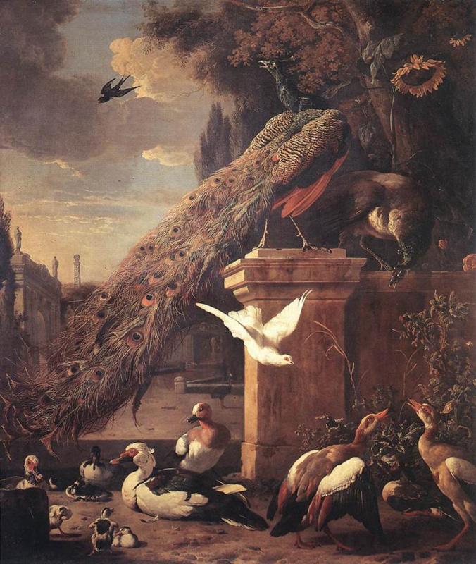 Melchior de Hondecuiter. Peacocks and ducks