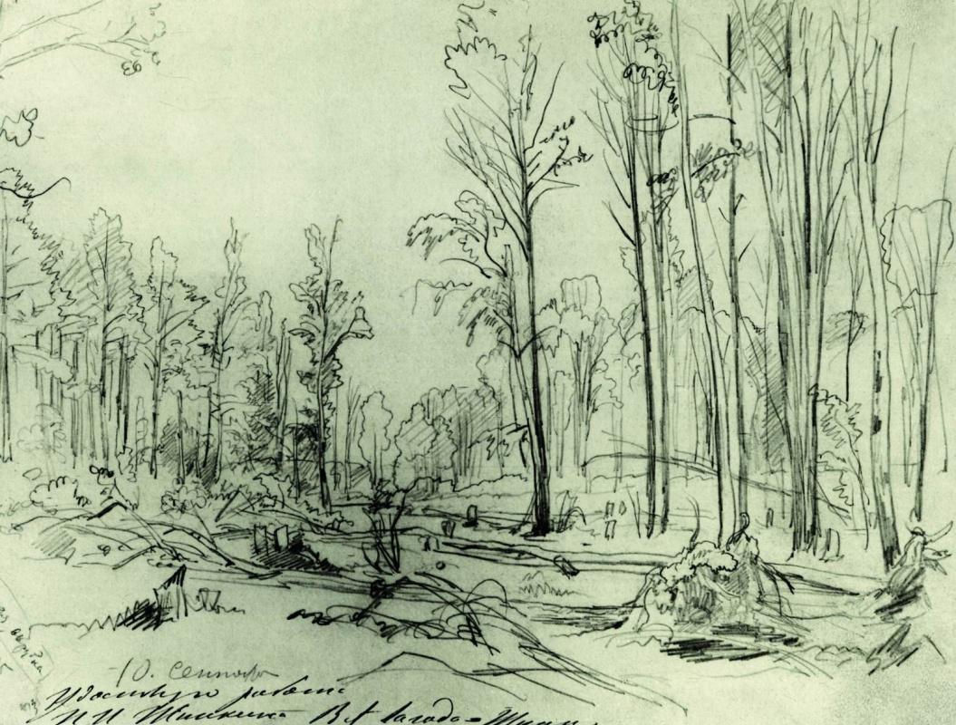 Ivan Shishkin. Forestry felling