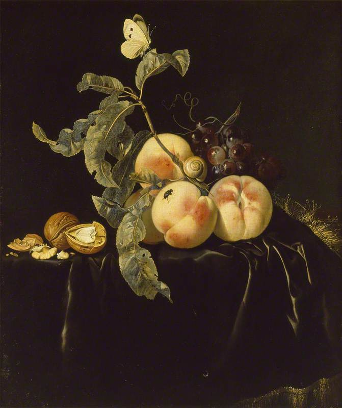 Willem van Aelst. Still life with fruits