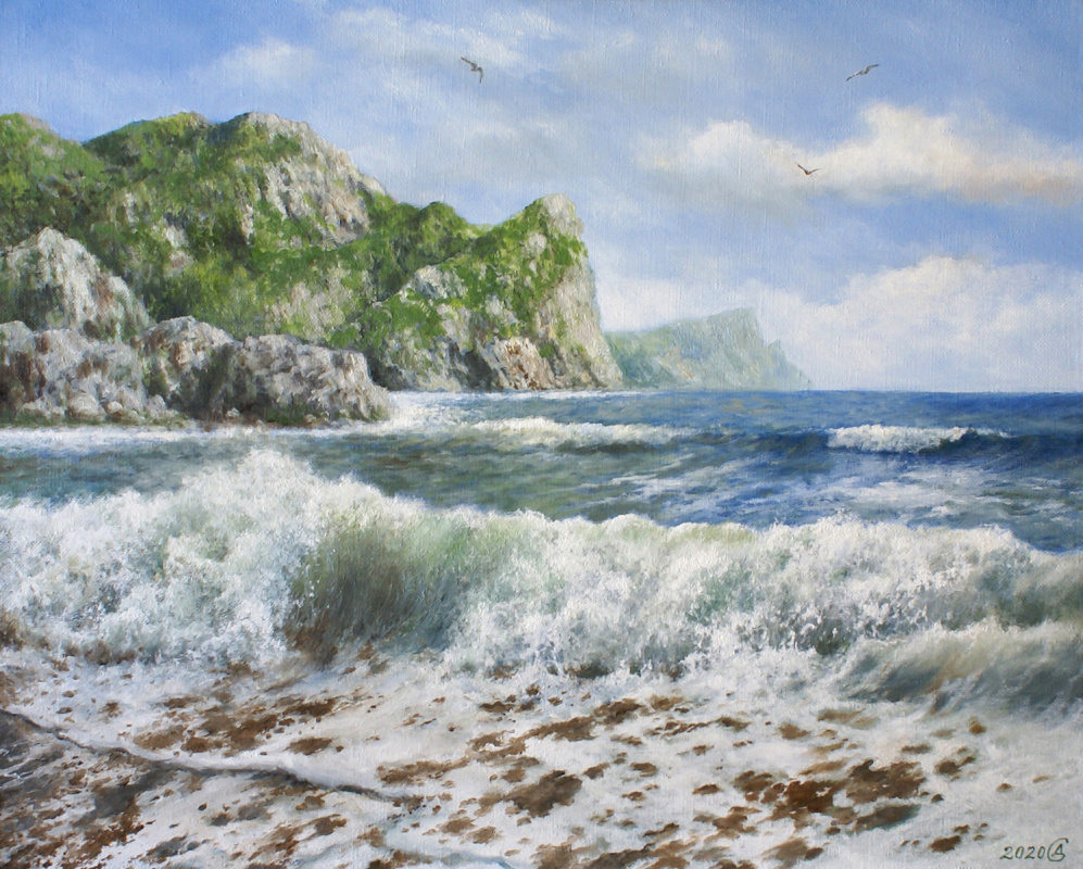 Сергей Владимирович Дорофеев. The surf is noisy
