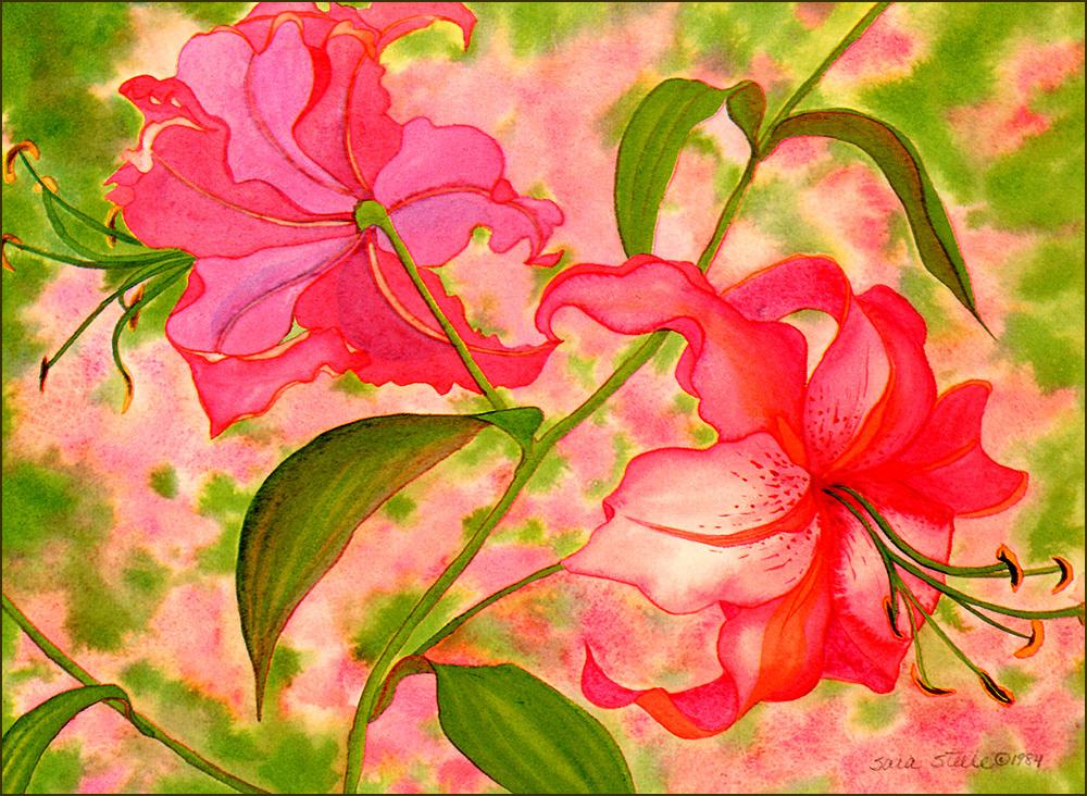 Сара Стил. Рубиновые лилии