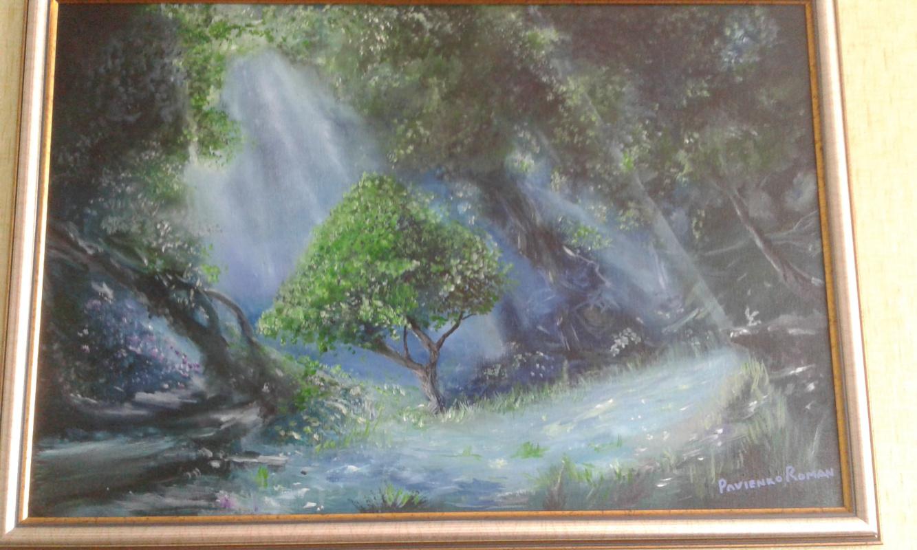 Karolina Valeryevna Pavlenko. Sun rays in the forest oil painting