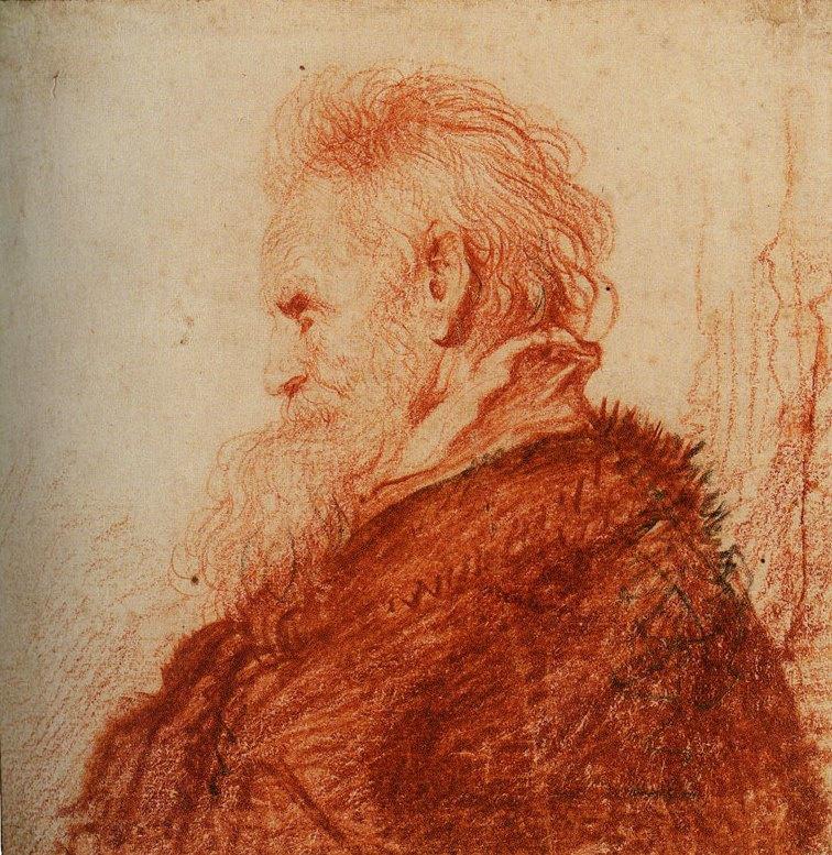Jan Lievens. Profile of a bearded man