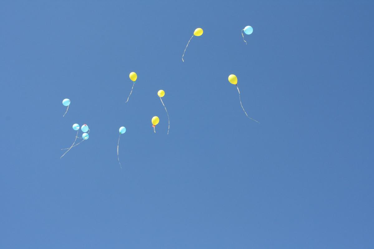 Unknown artist. Balloons