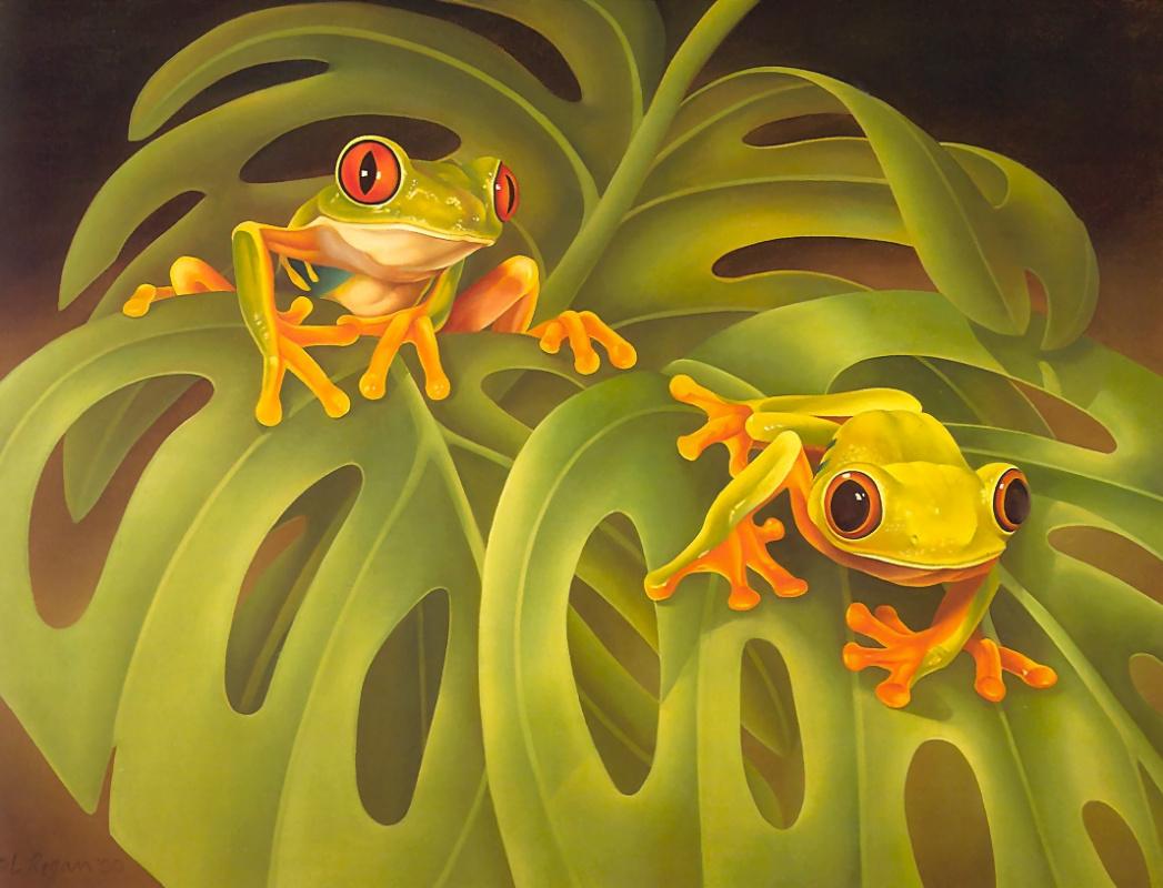 Laura Regan. Frogs