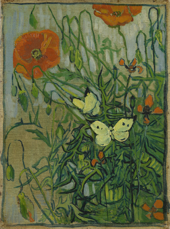 Vincent van Gogh. Poppies and butterflies