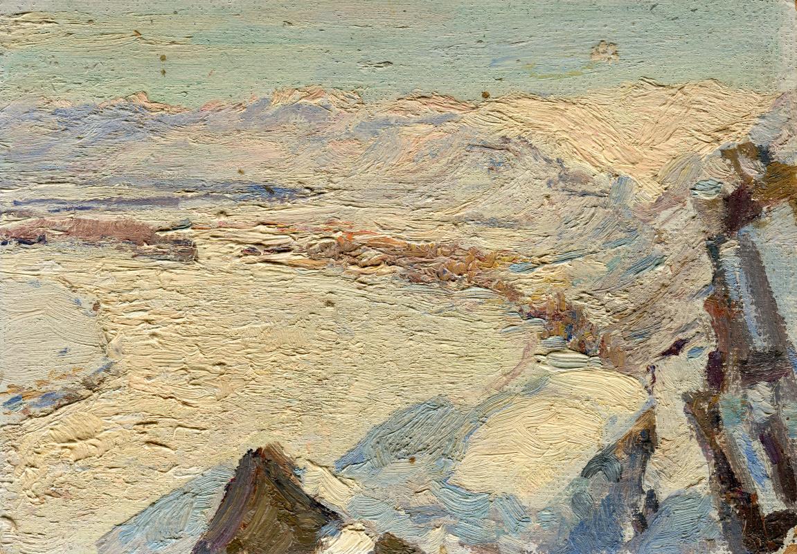 Vasily Fadeevich Demin. Winter etude Sayan