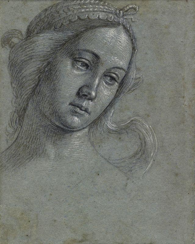 Витторе Карпаччо. Женская голова