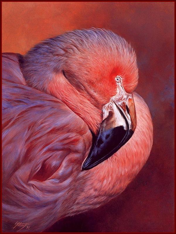 Эдвард Олдрич. Фламинго