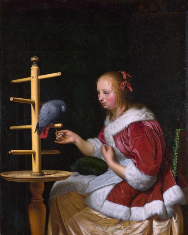 Франц ван Мирис Старший. Женщина в красной куртке кормит попугая