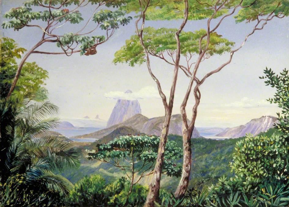 """Марианна Норт. Пейзаж с видом на гору """"Сахарная голова"""", Рио-де-Жанейро"""
