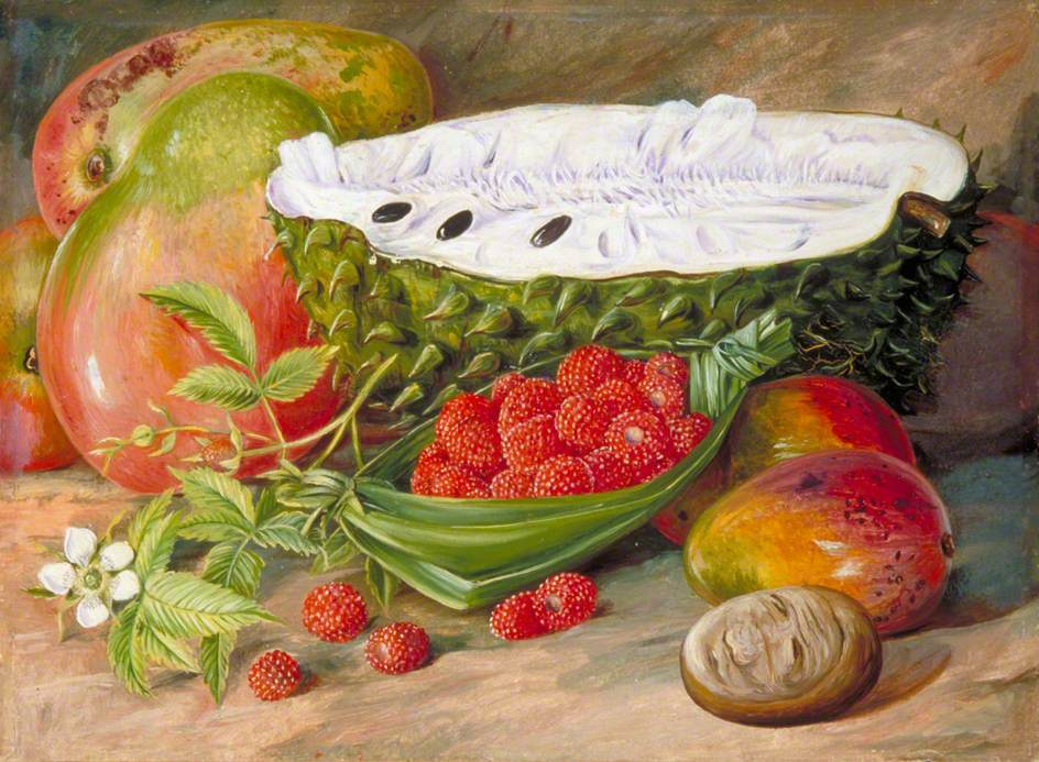 Marianna North. Still life with fruit of the Seychelles