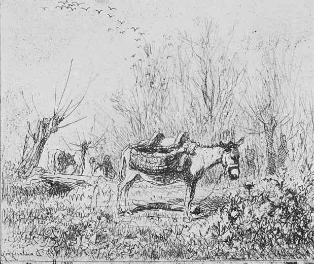Charles-Francois Daubigny. Donkey in the meadow