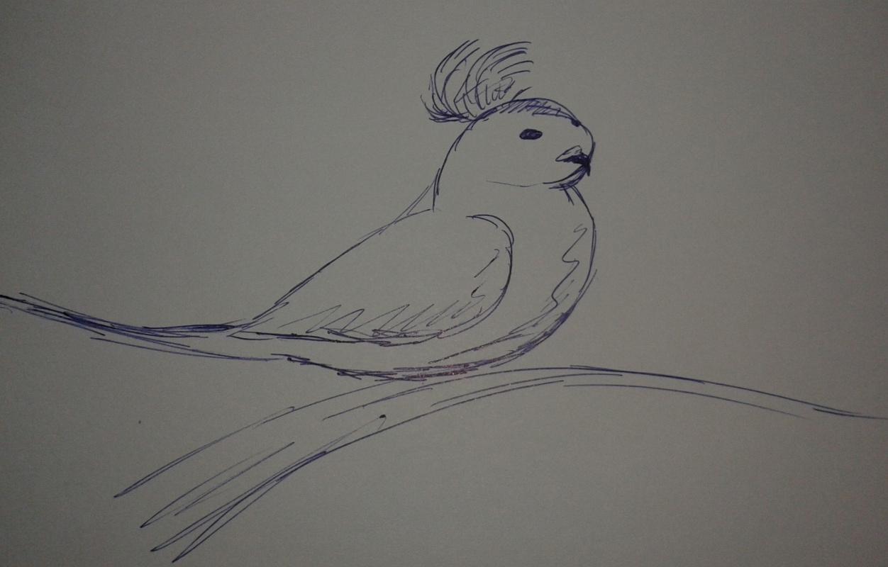 Zina Vladimirovna Parisva. Bird