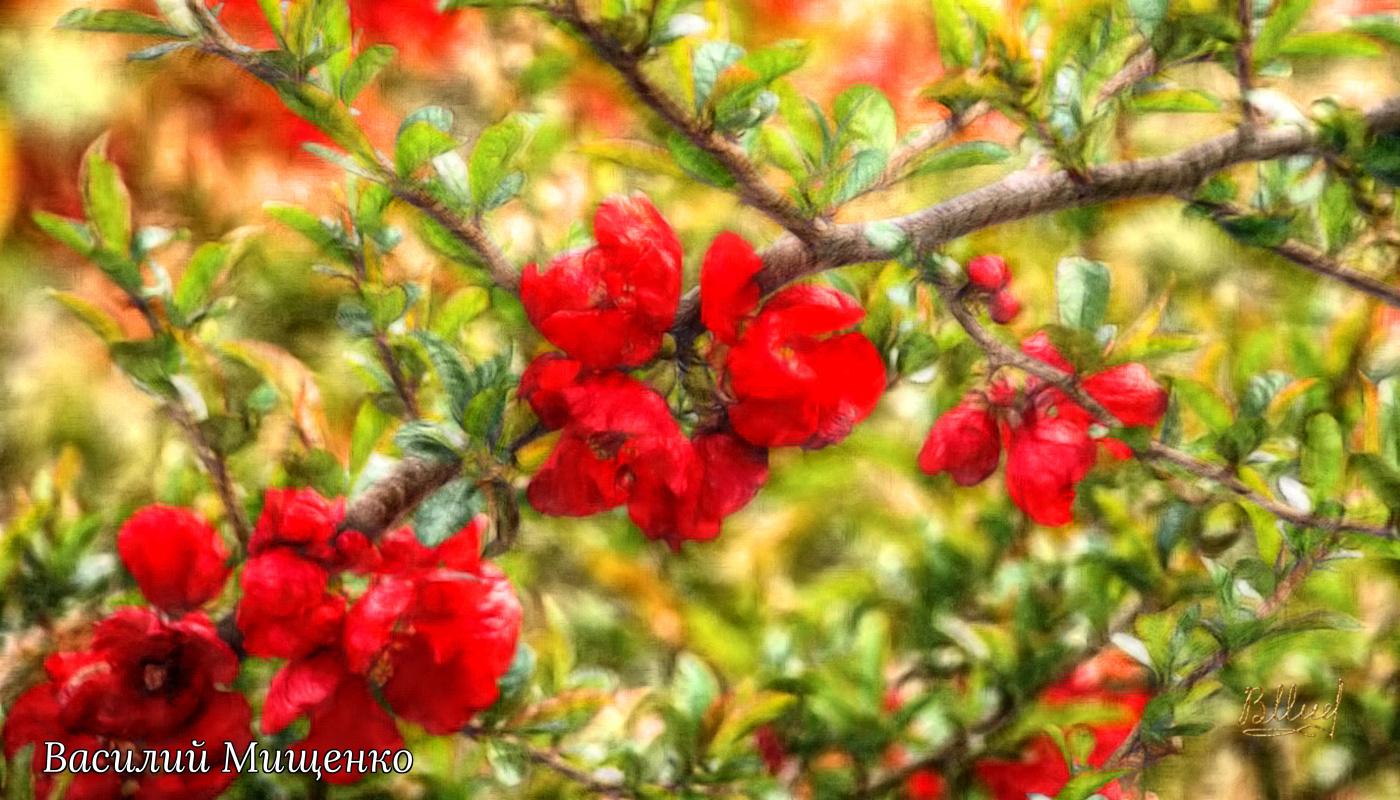 Vasiliy Mishchenko. Flowers 054