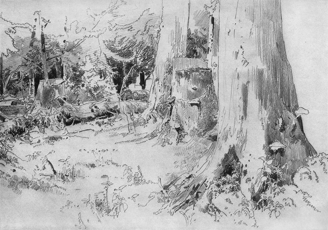 Ivan Shishkin. Carved wood