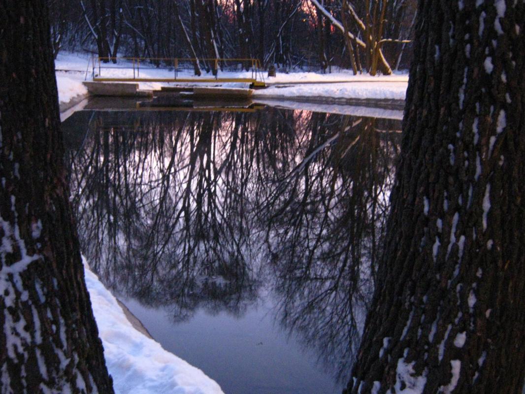 "Алексей Гришанков (Alegri). ""Winter lake"""