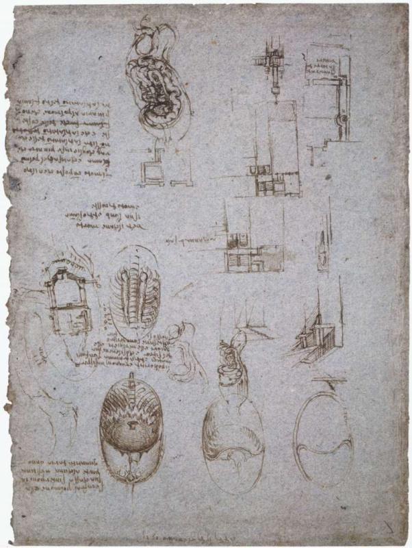 Leonardo da Vinci. Sketches of the Villa Melzi and anatomical sketches