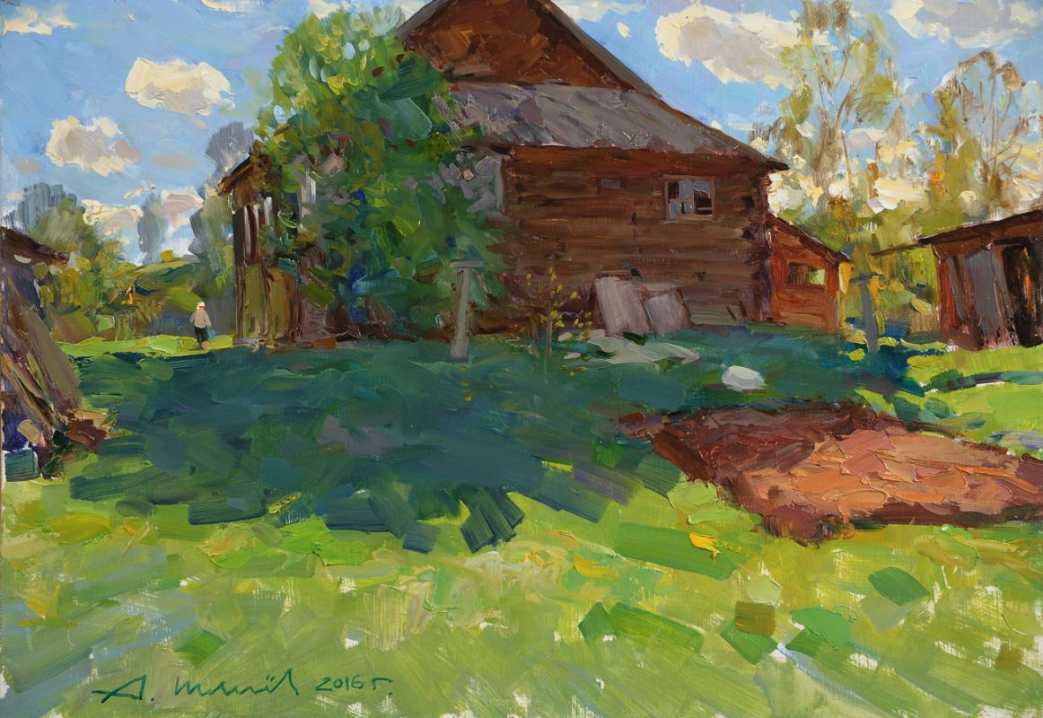 Alexander Victorovich Shevelyov. May shadow. D.V.P. Oil 36 x 52 cm. 2016