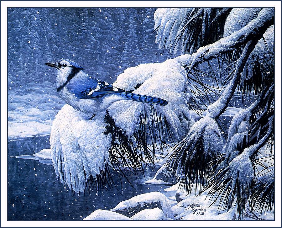 Стивен Лиман. Тени зимой