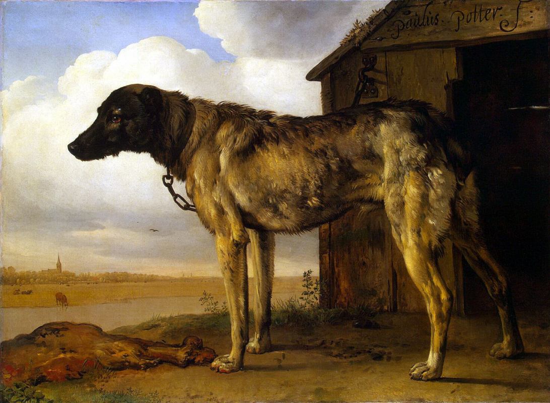Паулюс Поттер. Цепная собака