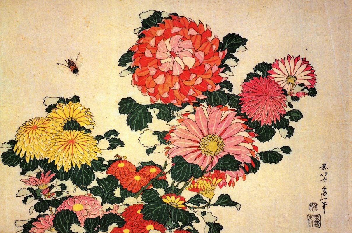 Кацусика Хокусай. Хризантемы и пчела