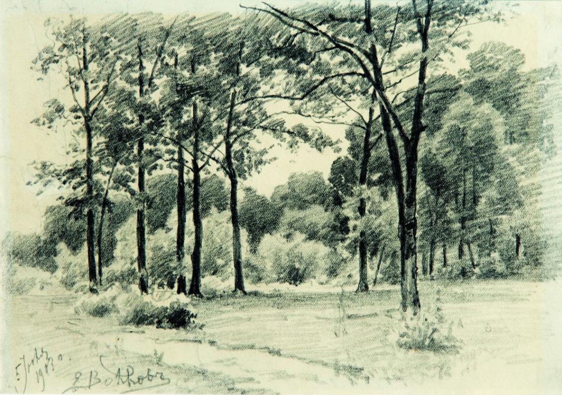 Efim Efimovich Volkov. Forest