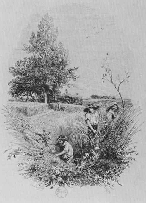 Шарль-Франсуа Добиньи. Дитя и цветы