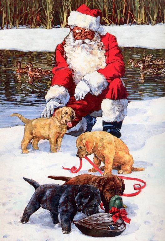 Санта и щенки