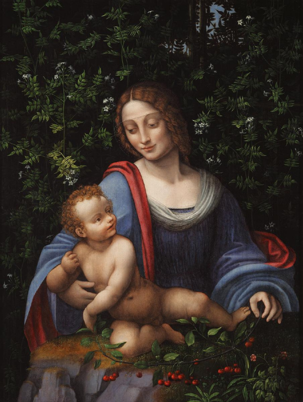 Франческо Мельци. Мадонна с младенцем под сенью жасмина