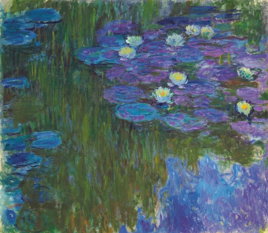 Клод Моне. Водяные лилии в цвету