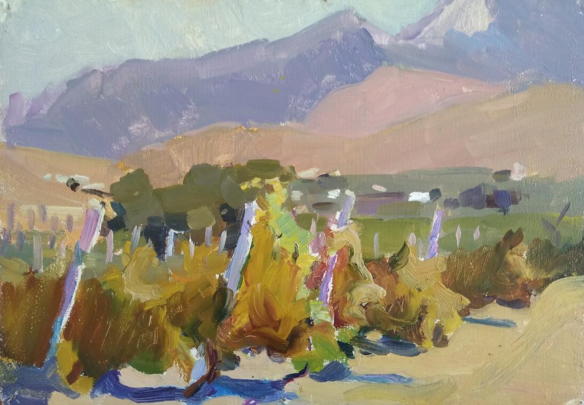 Unknown artist. Vineyards in Crimea