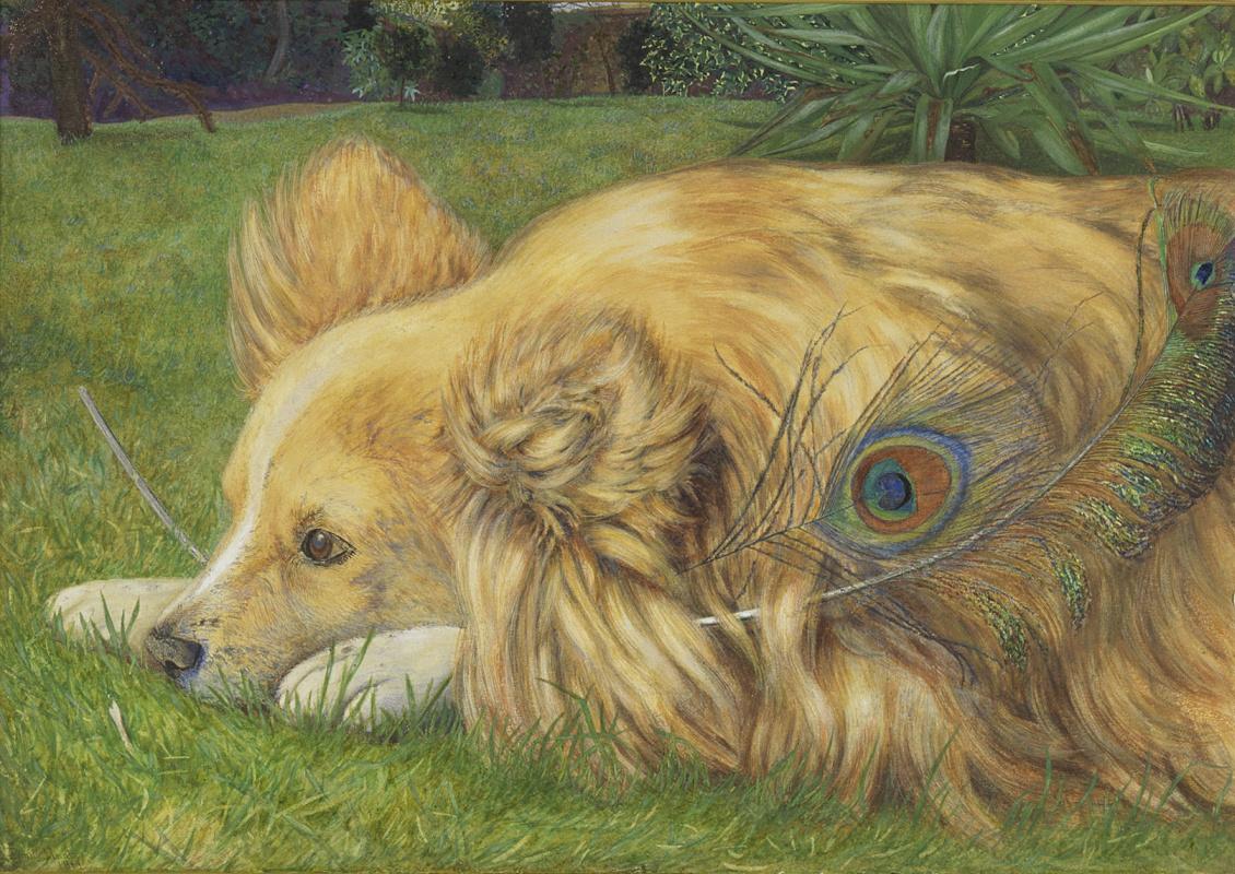 William Holman Hunt. Jealous Jesse (co-authored with Emily hunt)