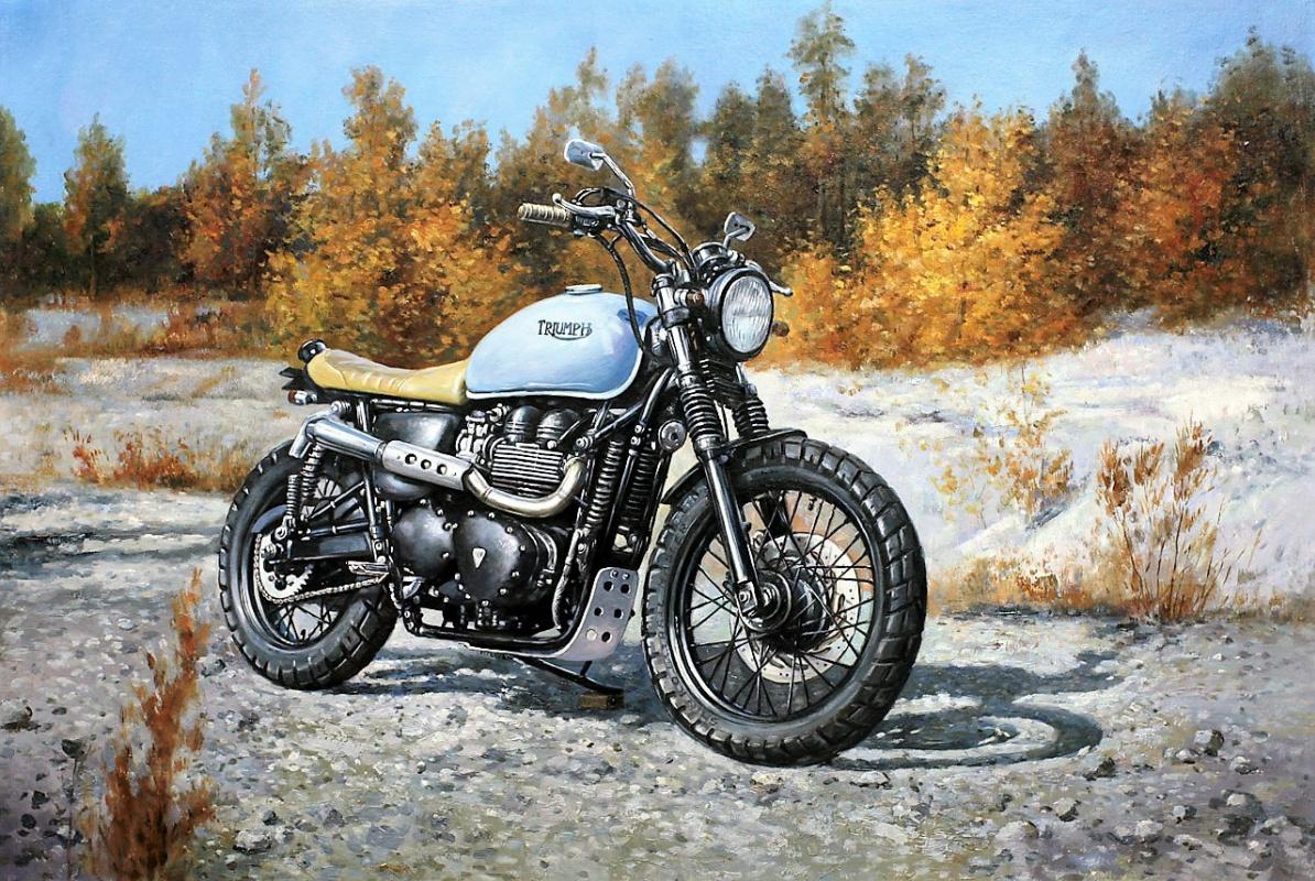 Савелий Камский. Мой Triumph (серия Мотоциклы)