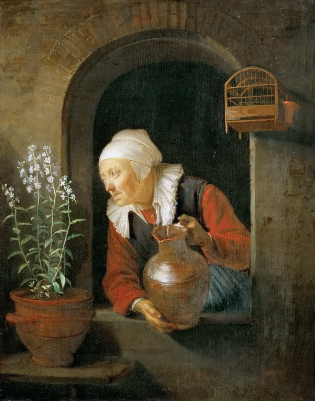 Gerrit (Gerard) Dow. The old woman in the window, watering flowers