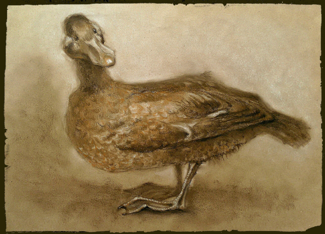 "Roman Soloviev. ""Duck"""