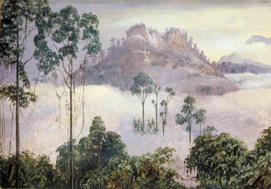 Марианна Норт. Серебристые горы в лунном свете, Саравак, Борнео