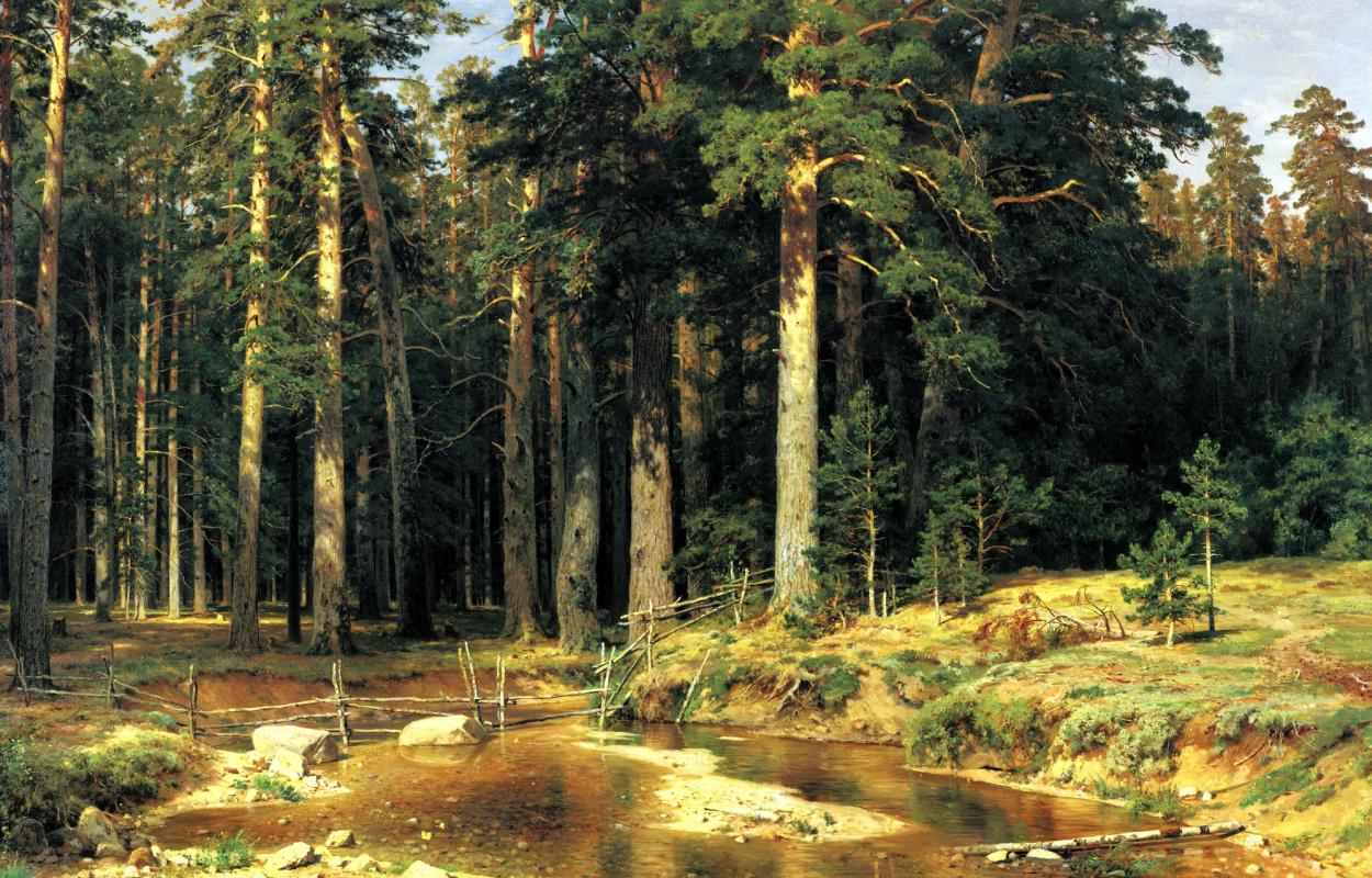 Ivan Shishkin. Mast-tree grove