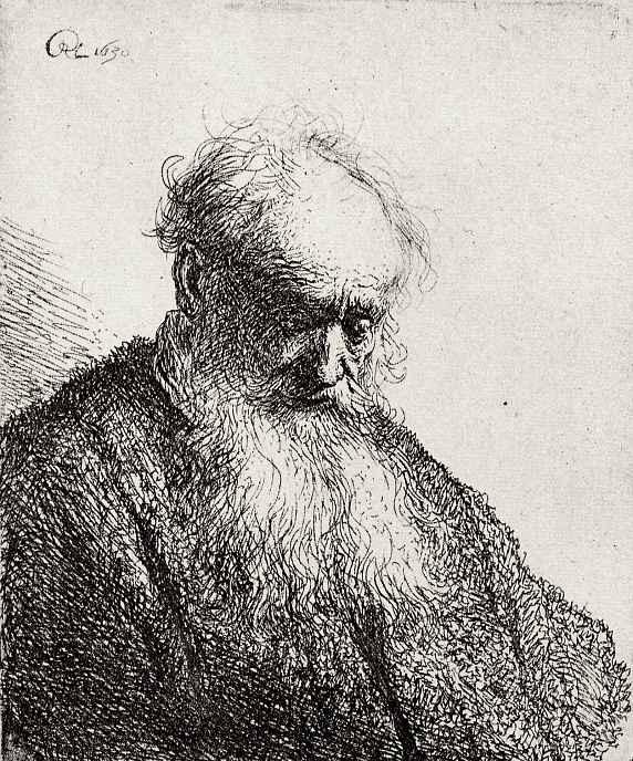 Рембрандт Харменс ван Рейн. Голова старика с длинной бородой