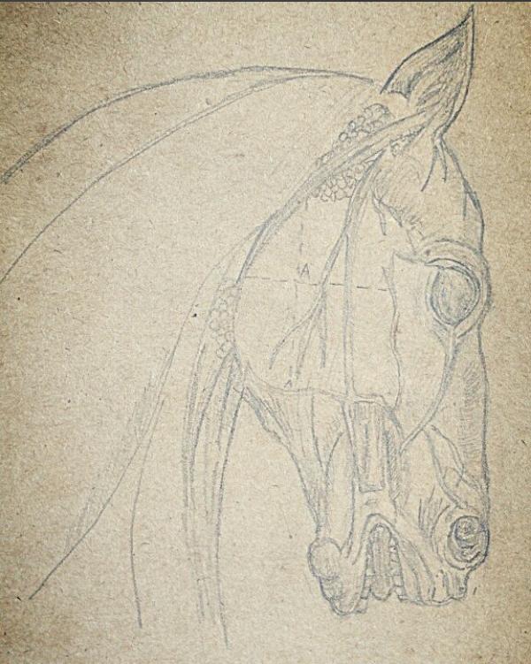 Christina Steinberg. Horse head