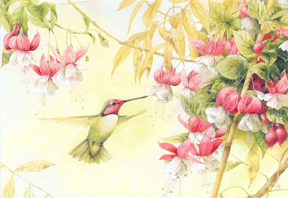 Картинки день, колибри открытка