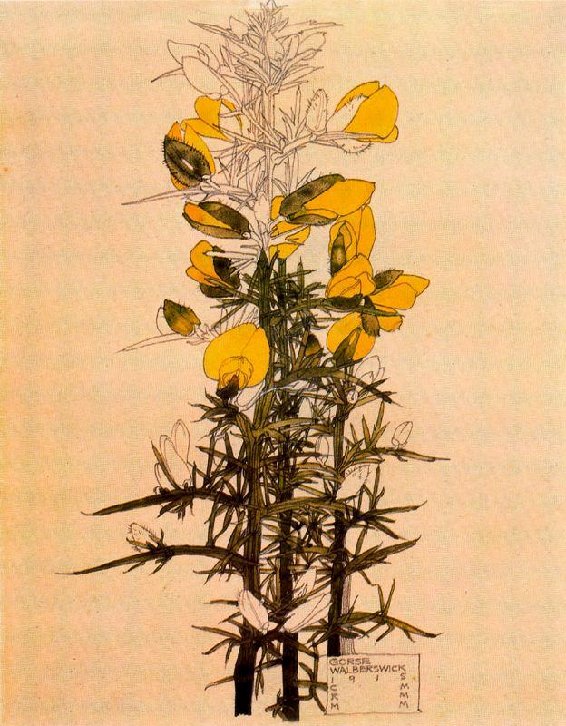 Чарльз Ренни Макинтош. Цветочный мотив 23