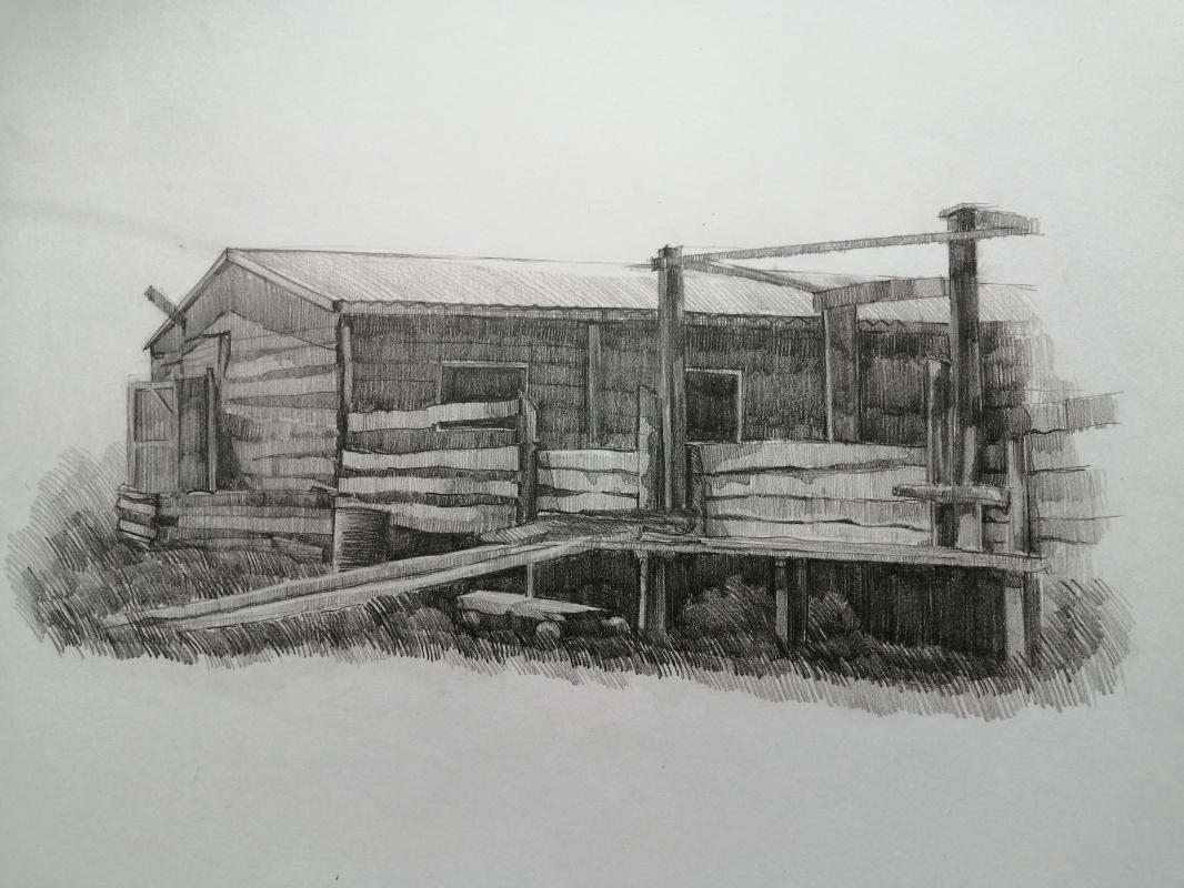 Alisa Chankova. Farm. Khakassia