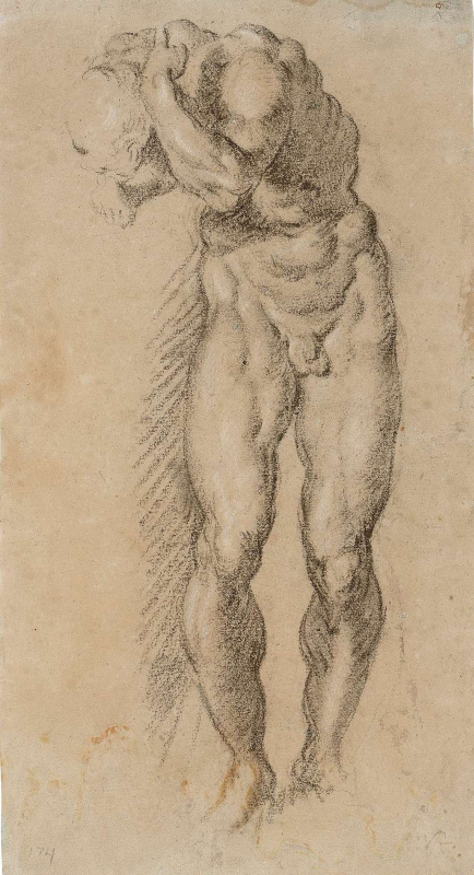 Jacopo (Robusti) Tintoretto. Study of a Male Nude