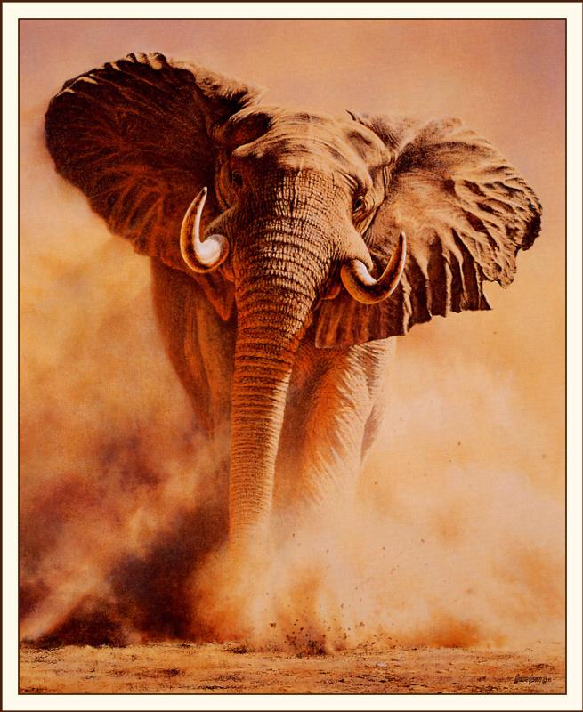 Брайан Ярви. Слон