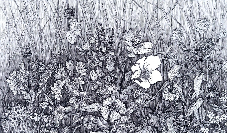 Marianna Maslova. Crimean herbs No. 3