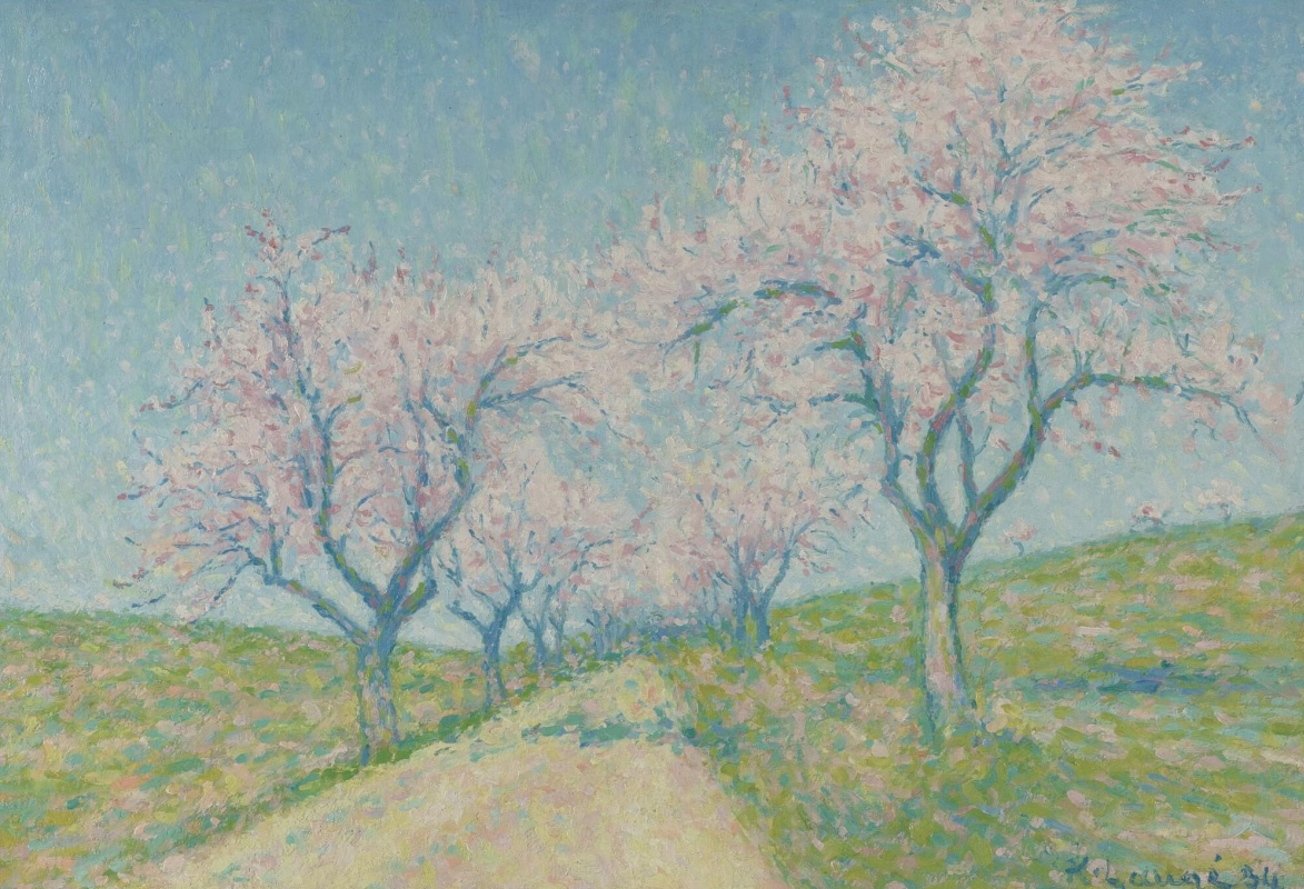 Ashil Lodge. The road among flowering almond trees