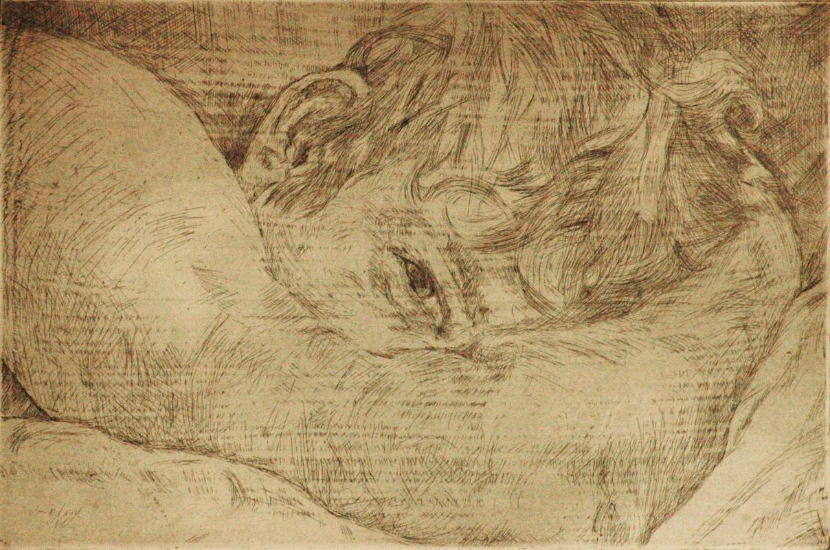 Renata Lefel. Awakening