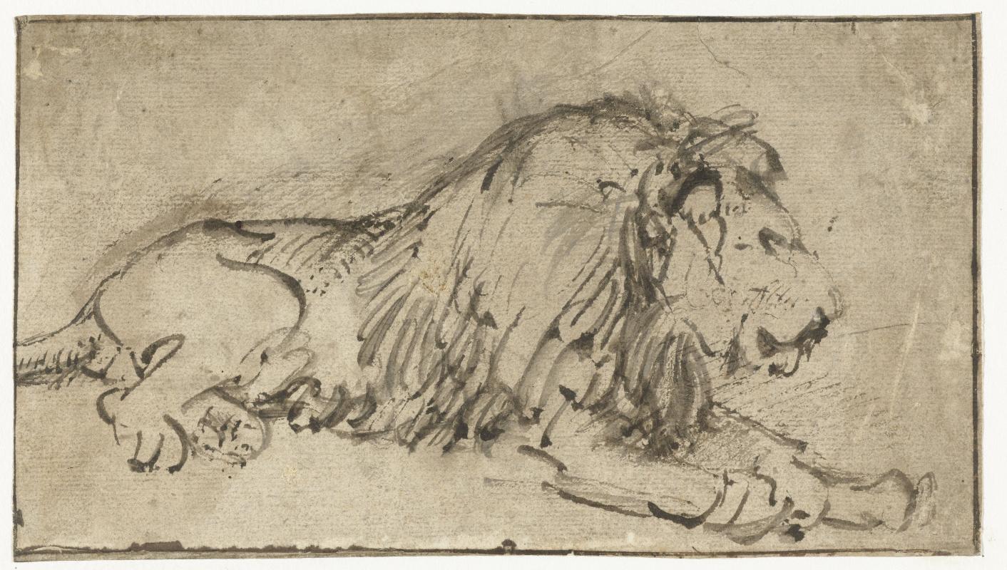 Rembrandt Harmenszoon van Rijn. Recumbent Lion, Facing Right