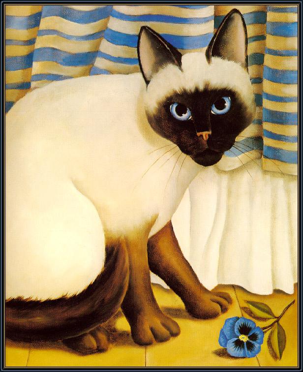 Диана Джексон. Голубые глаза кота